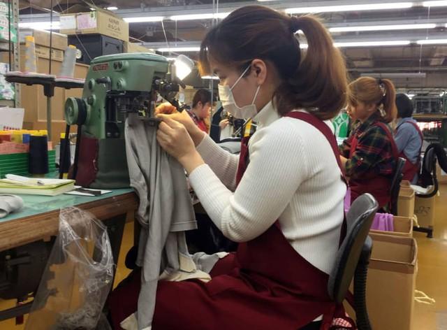 Nhật Bản mở cửa thị trường lao động, công nhân Việt Nam đối mặt nguy cơ lớn nhất? - Ảnh 1.