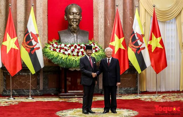 Tổng Bí thư, Chủ tịch nước Nguyễn Phú Trọng chủ trì Lễ đón chính thức Quốc vương Brunei thăm cấp Nhà nước tới Việt Nam - Ảnh 11.