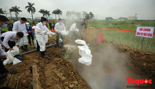 Hà Nội diễn tập ứng phó khẩn cấp với dịch tả lợn Châu Phi - Ảnh 19.
