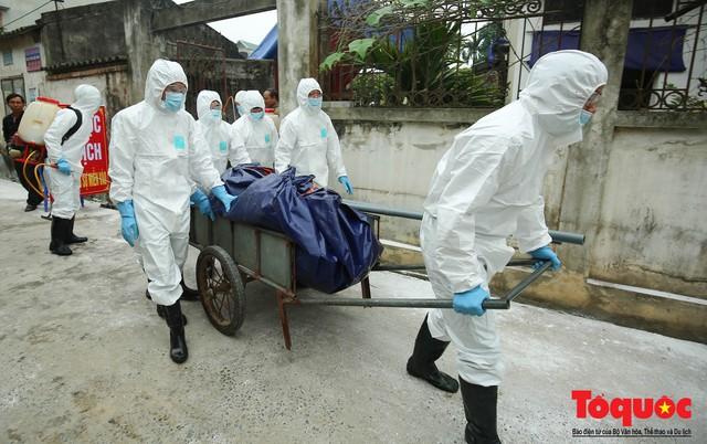 Hà Nội diễn tập ứng phó khẩn cấp với dịch tả lợn Châu Phi - Ảnh 13.