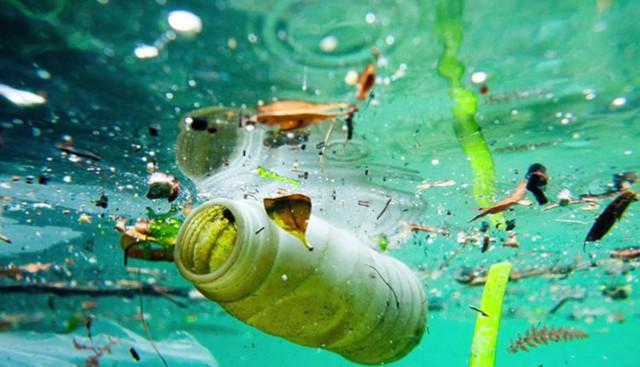 Rác nhiều hơn cá: Lềnh bềnh nguy cơ tổn hại nghiêm trọng môi trường biển tại Đông Á  - Ảnh 1.