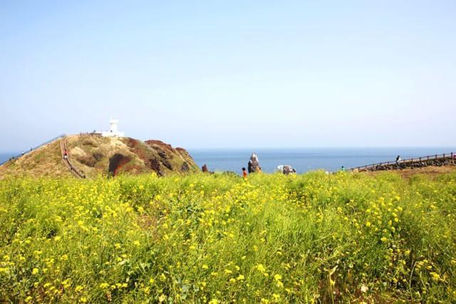 Những điểm đến đầy thu hút trong tiết trời xuân tại Hàn Quốc - Ảnh 12.