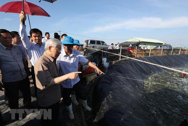 Hình ảnh Tổng Bí thư, Chủ tịch nước Nguyễn Phú Trọng tại Kiên Giang  - Ảnh 4.