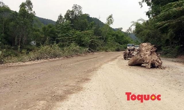 Nghệ An: Xe chở đất, đá cày nát đường dân sinh ra quốc lộ, người dân sống chung với ô nhiễm - Ảnh 8.