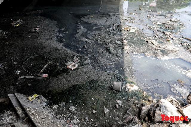 Tình trạng đen ngòm, hôi thối của sông Tô Lịch trước thông tin Hà Nội sẽ thí điểm làm sạch bằng công nghệ Nhật Bản - Ảnh 5.