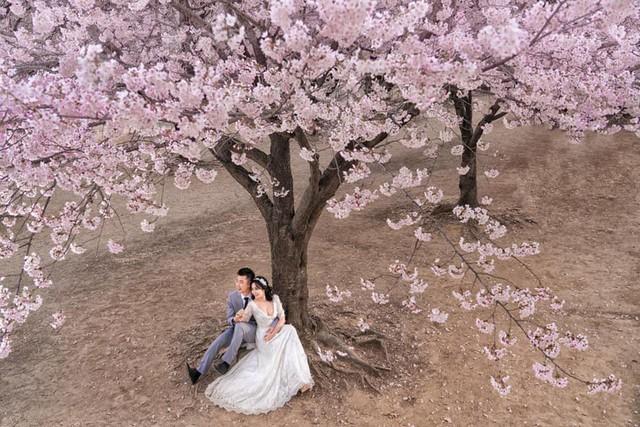 Ốc Thanh Vân khoe ảnh cưới chụp tại Hàn Quốc, vô tình để lộ hình xăm gợi cảm - Ảnh 3.