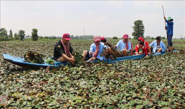 Khai thác du lịch nông nghiệp: Bài 1 - Kinh nghiệm sinh động từ quốc tế - Ảnh 1.