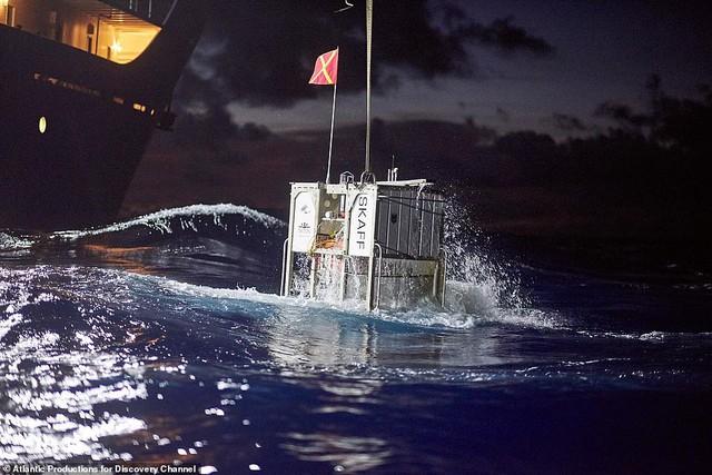 Phát hiện kinh hoàng toàn cầu: túi nylon và vỏ kẹo tại nơi sâu nhất của Trái Đất - Ảnh 1.
