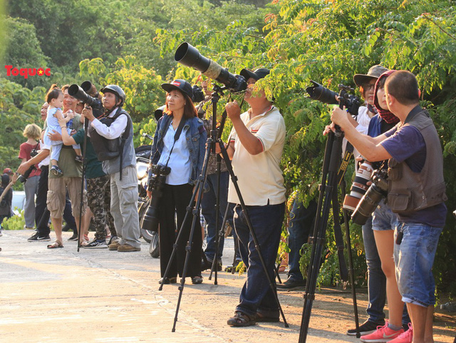 Mê mẩn mùa hoa tím trên bán đảo Sơn Trà - Ảnh 11.