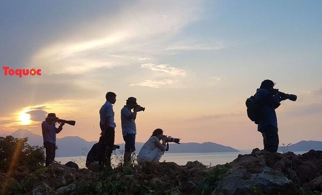 Mê mẩn mùa hoa tím trên bán đảo Sơn Trà - Ảnh 23.