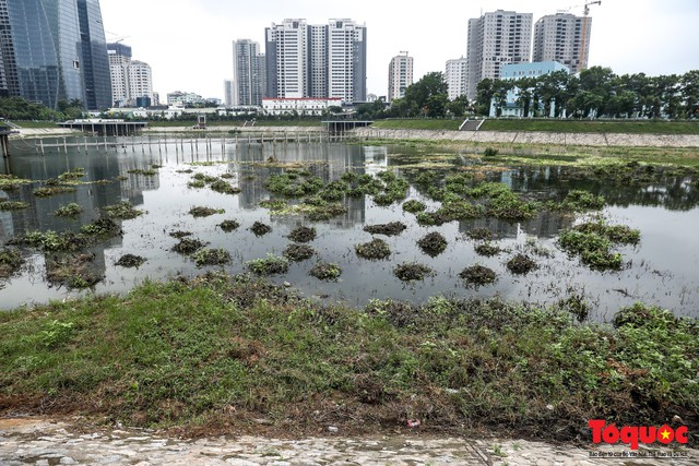 Hà Nội tăng cường công nhân dọn dẹp công viên 300 tỷ  đang bị ô nhiễm nặng - Ảnh 3.