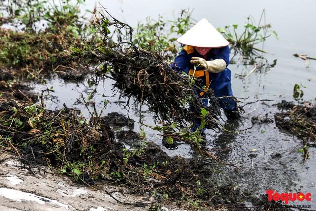 Hà Nội tăng cường công nhân dọn dẹp công viên 300 tỷ  đang bị ô nhiễm nặng - Ảnh 8.