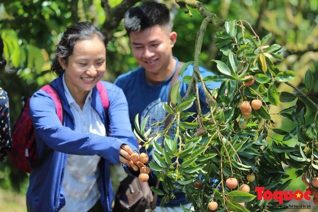 Trải nghiệm tour độc đáo miệt vườn Thanh Khê để hái vải trên sông - Ảnh 14.