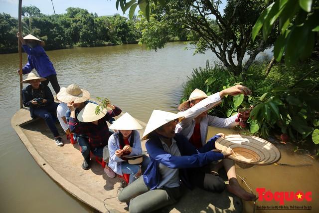 Trải nghiệm tour độc đáo miệt vườn Thanh Khê để hái vải trên sông - Ảnh 4.