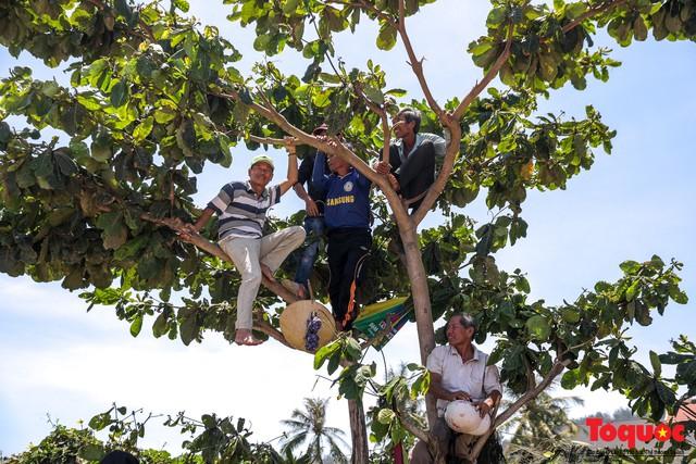 Hàng ngàn người dân đội nắng, lội nước đi xem lễ hội đua thuyền ở đảo Lý Sơn - Ảnh 5.