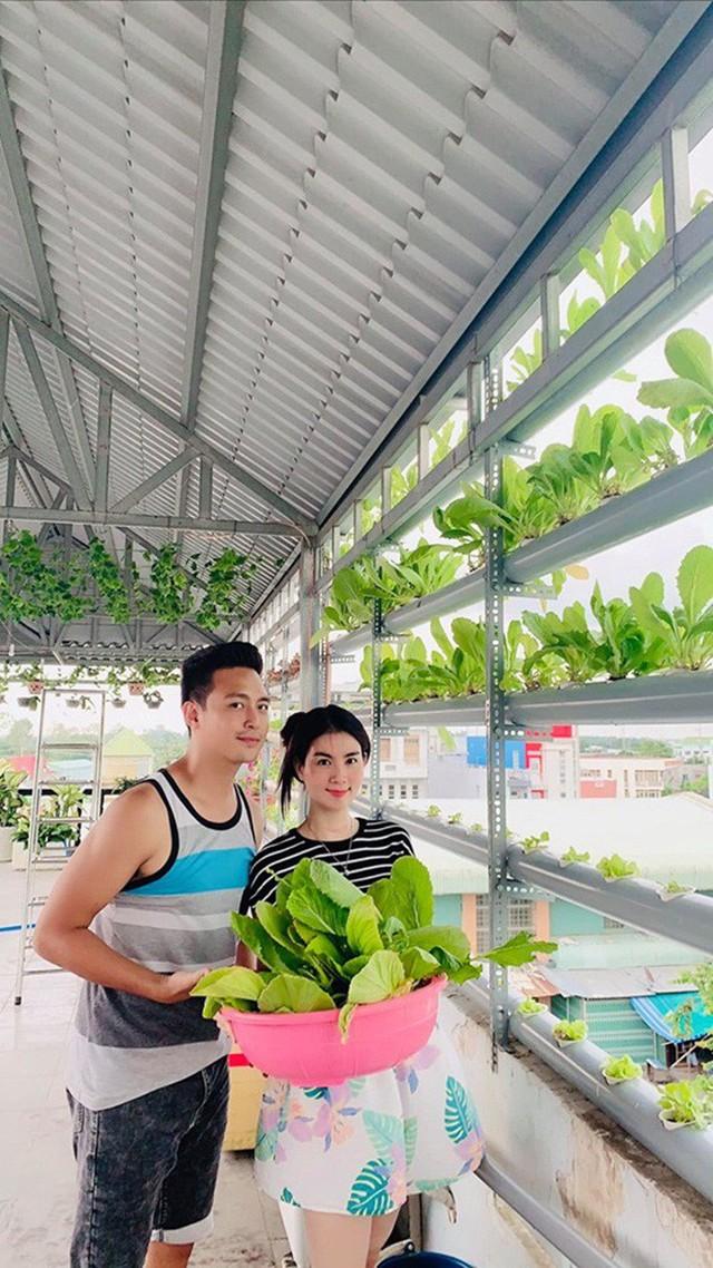 Vườn rau thủy canh ăn không xuể trên sân thượng nhà diễn viên Kha Ly - Thanh Duy - Ảnh 2.