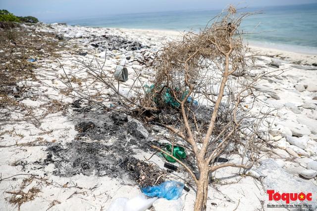 Bờ biển Lý Sơn vẫn ngập rác thải sau nhiều năm nỗ lực xử lý - Ảnh 5.