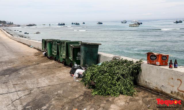Bờ biển Lý Sơn vẫn ngập rác thải sau nhiều năm nỗ lực xử lý - Ảnh 10.