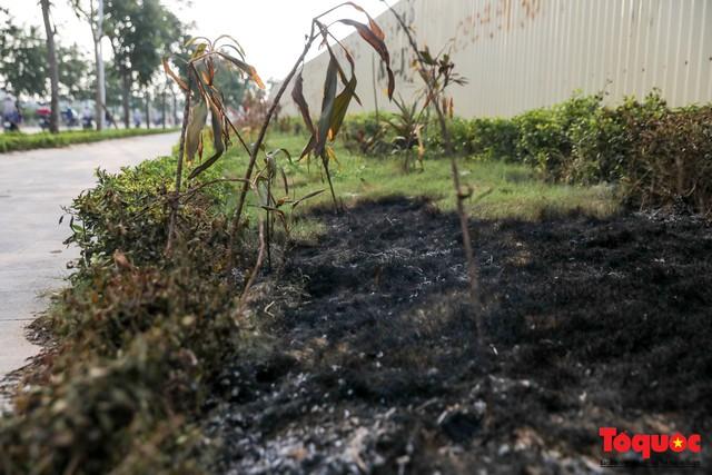Hà Nội: Sau 2 năm khánh thành, rác vây phố Trịnh Văn Bô, níu chân người đi đường - Ảnh 8.
