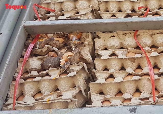 Nguy cơ ô nhiễm môi trường từ cơ sở kinh doanh trứng gia cầm giữa trung tâm Đà Nẵng - Ảnh 5.
