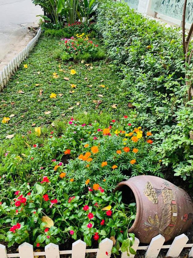 Căn biệt thự ngập tràn hoa và cây ăn quả của nữ ca sĩ Vy Oanh - Ảnh 13.