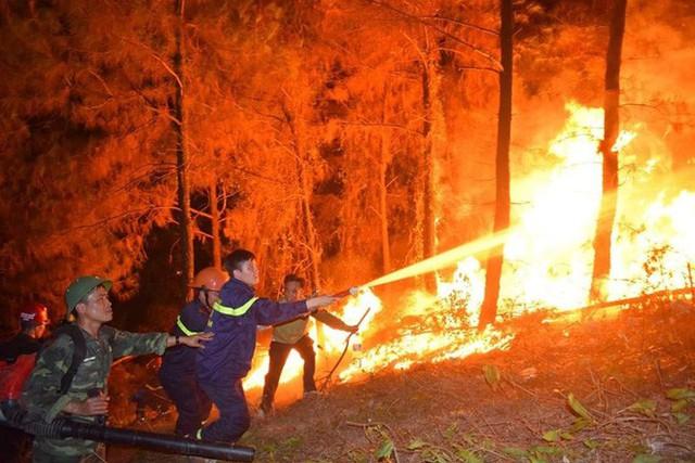 Sao Việt hướng về vụ cháy rừng ở miền Trung - Ảnh 1.