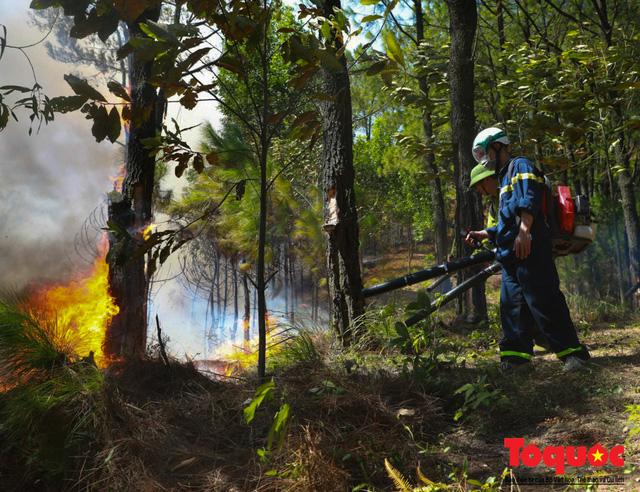 Vụ cháy rừng nghiêm trọng tại Hà Tĩnh: Đám cháy đã được khống chế hoàn toàn - Ảnh 2.
