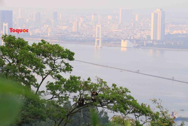 Giới thiệu du lịch Đà Nẵng tại Áo: Mời gọi các công ty lữ hành đưa du khách đến Việt Nam  - Ảnh 2.