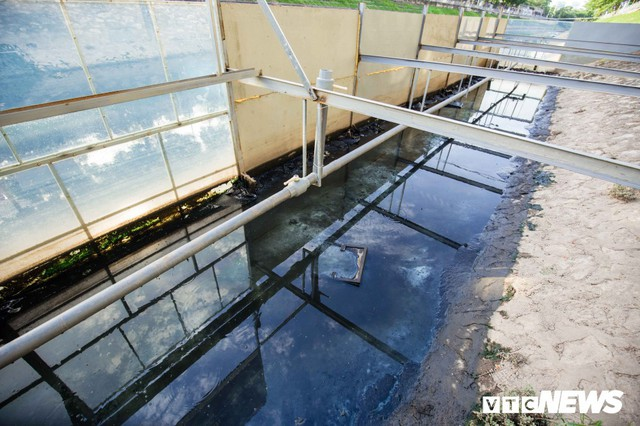 Ảnh: Cận cảnh đáy sông Tô Lịch sau 3 tuần thí điểm công nghệ Nhật Bản phân hủy bùn hữu cơ - Ảnh 3.