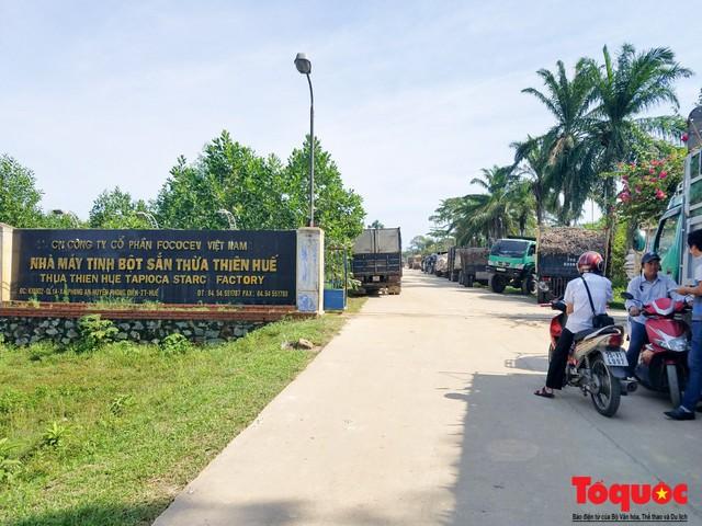 Vi phạm về môi trường, Nhà máy tinh bột sắn Thừa Thiên Huế bị xử phạt hơn 470 triệu đồng - Ảnh 1.