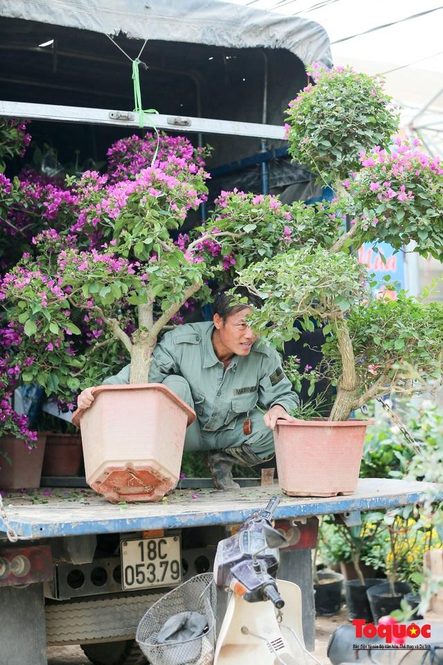 Rực rỡ sắc xuân ở làng hoa ven sông Hồng - Ảnh 15.