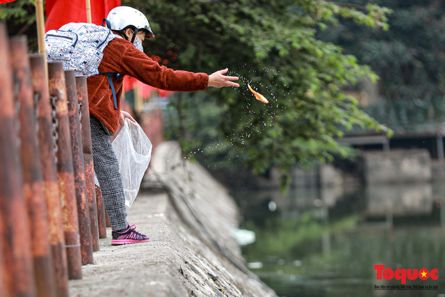Hà Nội: Nước hồ Văn Quán chuyển màu đen kịt, nổi váng, cá chết bốc mùi hôi thối sau ngày tiễn ông táo về trời - Ảnh 4.