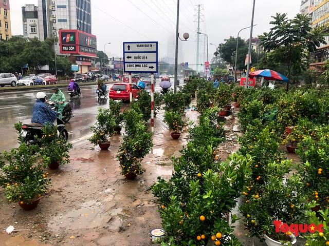 Hà nội đổ mưa lớn: Đào, quất giảm giá mạnh ngày 30 Tết, cây đào giá cả triệu bạc biến thành củi chỉ sau 1 ngày - Ảnh 2.