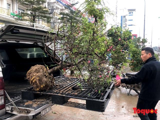 Hà nội đổ mưa lớn: Đào, quất giảm giá mạnh ngày 30 Tết, cây đào giá cả triệu bạc biến thành củi chỉ sau 1 ngày - Ảnh 9.