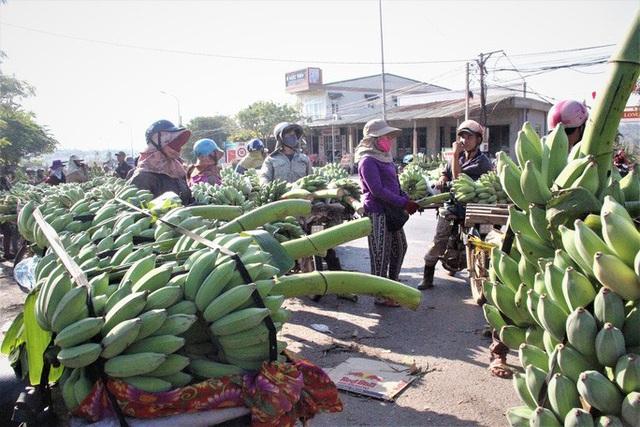 Cận cảnh chợ chuối mật mốc lớn nhất miền Trung ngày cận Tết - Ảnh 5.