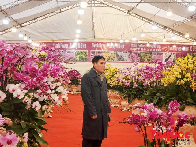 Vượt hàng vạn cây số lan hồ điệp Đà Lạt khoe sắc ở Thủ Đô, có những chậu giá hơn 100 triệu đồng - Ảnh 16.