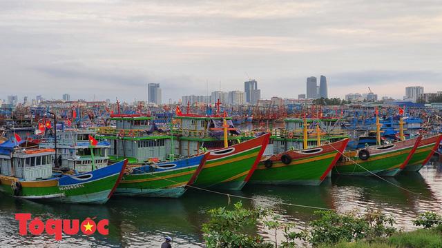 Ứng phó bão số 9: Đà Nẵng sẽ cấm người và phương tiện ra đường từ chiều tối 27/10 - Ảnh 1.