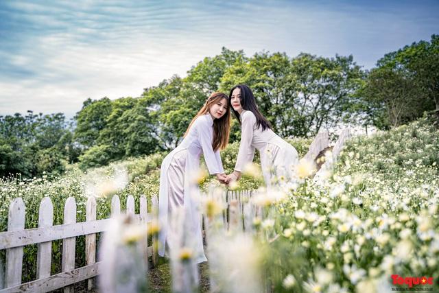 Thiếu nữ Hà nội háo hức khoe sắc bên hoa cúc họa mi đầu mùa - Ảnh 6.