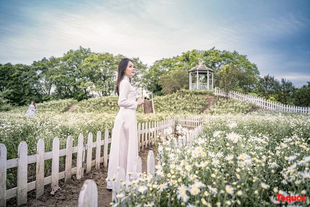 Thiếu nữ Hà nội háo hức khoe sắc bên hoa cúc họa mi đầu mùa - Ảnh 7.