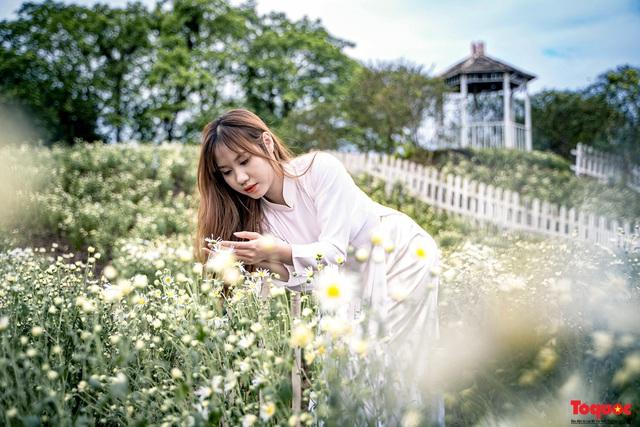 Thiếu nữ Hà nội háo hức khoe sắc bên hoa cúc họa mi đầu mùa - Ảnh 5.