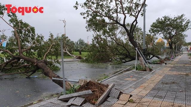 Hình ảnh Đà Nẵng sau bão số 9, nhiều cây xanh ngã đổ la liệt - Ảnh 2.
