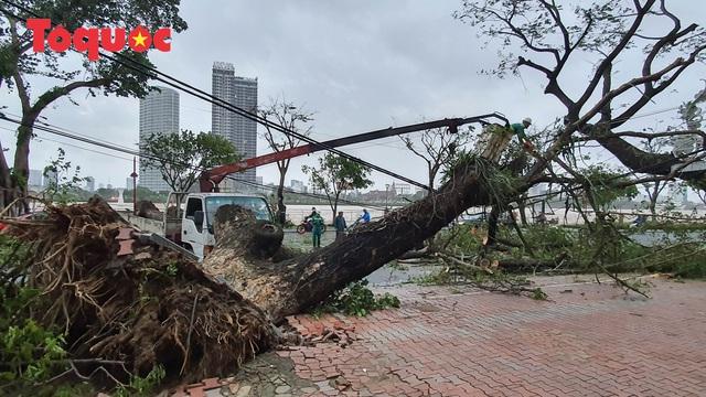 Hình ảnh Đà Nẵng sau bão số 9, nhiều cây xanh ngã đổ la liệt - Ảnh 10.