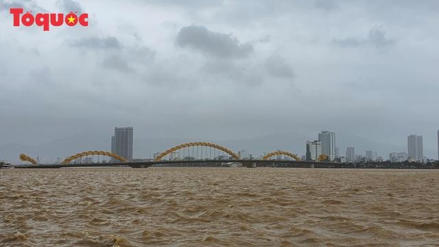 Hình ảnh Đà Nẵng sau bão số 9, nhiều cây xanh ngã đổ la liệt - Ảnh 1.