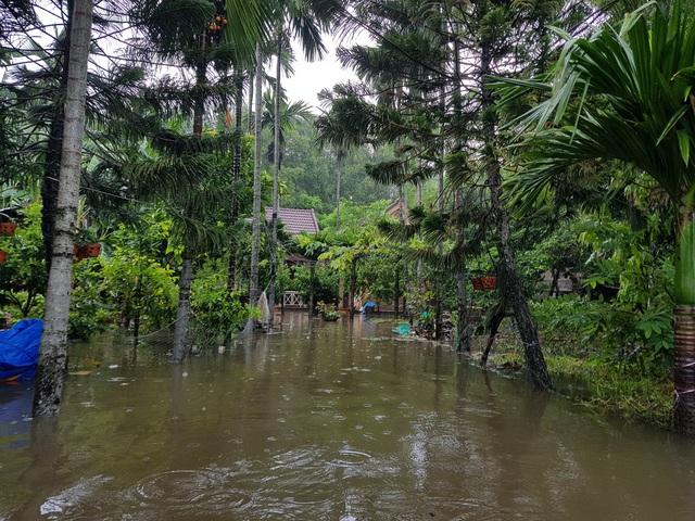 Nhiều nhà dân ở Đà Nẵng ngập sâu, người dân phải di chuyển bằng ghe - Ảnh 15.