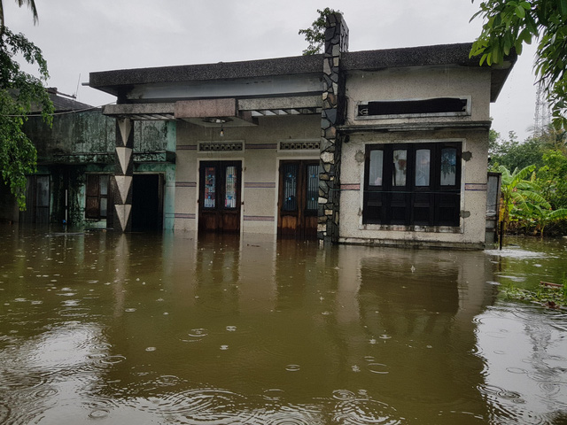 Nhiều nhà dân ở Đà Nẵng ngập sâu, người dân phải di chuyển bằng ghe - Ảnh 1.