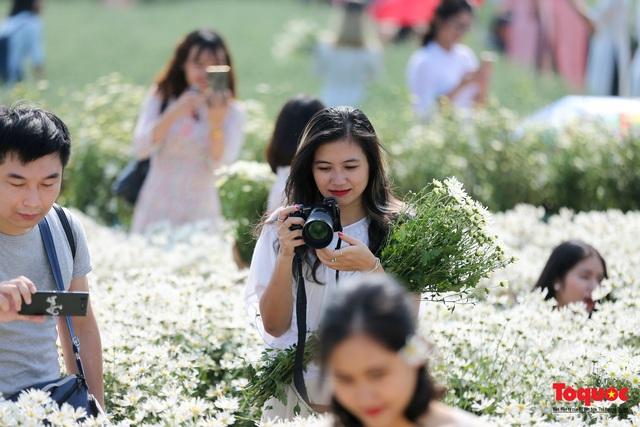 Cúc họa mi đầu màu: một mét vuông, 10 thiếu nữ chen nhau chụp ảnh  - Ảnh 5.