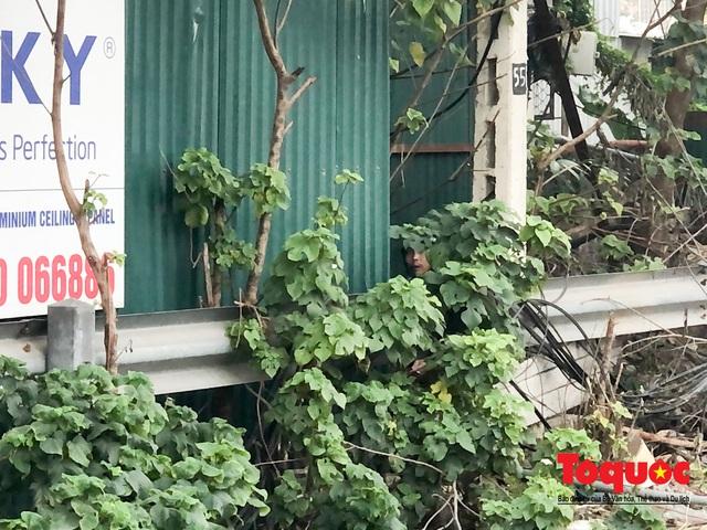 """""""Kim tiêm nguyên máu tươi"""" bủa vây cổng bệnh viện Bạch Mai - Ảnh 3."""