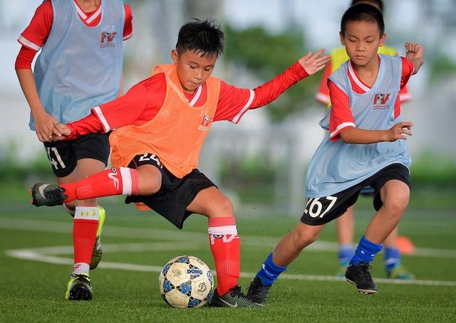 PVF tuyển sinh khóa 12, tìm kiểm tài năng bóng đá trẻ - Ảnh 1.