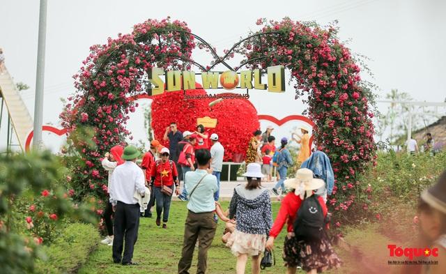 Ngắm thung lũng hoa hồng tuyệt đẹp nhận kỷ lục lớn nhất Việt Nam - Ảnh 17.