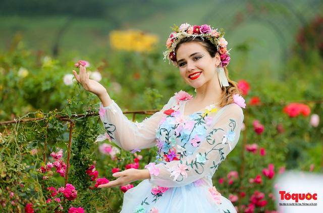 Ngắm thung lũng hoa hồng tuyệt đẹp nhận kỷ lục lớn nhất Việt Nam - Ảnh 16.